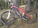 Mountainbike Specialized S-Works Epic Carbon